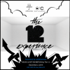 """""""The 12 Experience"""" Presented by oddblueroses at Art Basel"""
