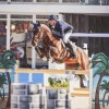 Daniel Deusser turns up the heat with high octane American Invitational win at Longines Global Champions Tour Miami Beach