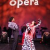 Florida Grand Opera 75th Anniversary Gala