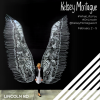 LINCOLN ROAD WELCOMES MURAL ARTIST KELSEY MONTAGUE  February 3 – 5, 2017