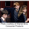 Arsht Center presents Harry Potter and The Sorcerer's Stone in Concert – June 10