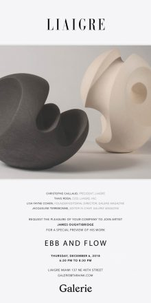 LIAIGRE x Galerie Magazine l James Oughtibridge Preview