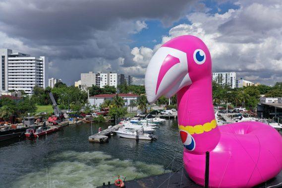 """Always Pool Ready"" Pepsi #Summergram Flamingo along Biscayne Bay"