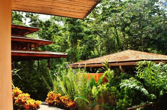 Enjoy a digital detox at Nayara Springs in Costa Rica