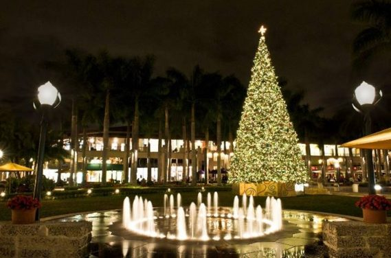 Merrick Park 16th Annual Tree Lighting Ceremony