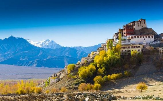 Visit India with andBeyond to explore the mountainous region of Ladakh and search for snow leopards.