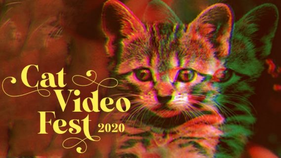Best of CatVideoFest