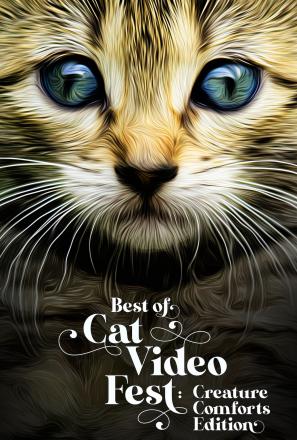 BEST OF CAT VIDEO FEST